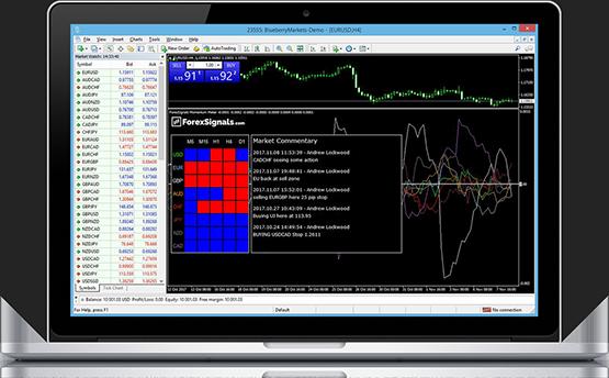 Forex signals momentum meter